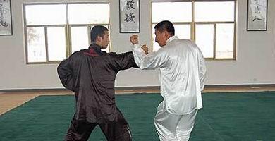 八极拳单式图解(一):撑掌、撑锤、降龙式